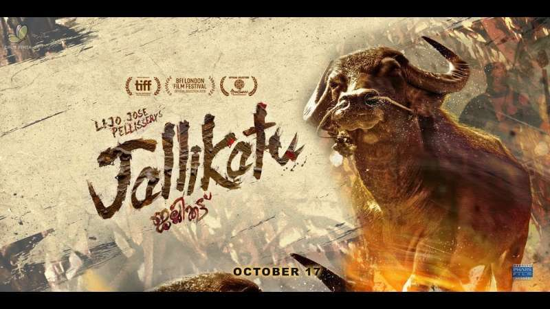 malayalam-film-jallikattu-is-indias-official-entry-to-oscars-2021_g2d